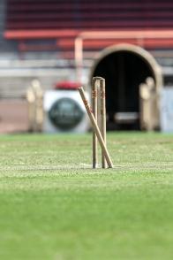 KidsXpress Cricket-6579