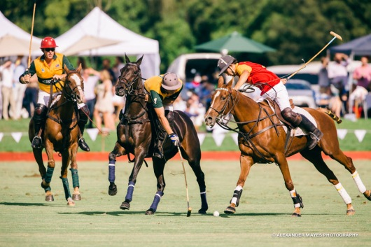 Brickworks Polo Day-8802
