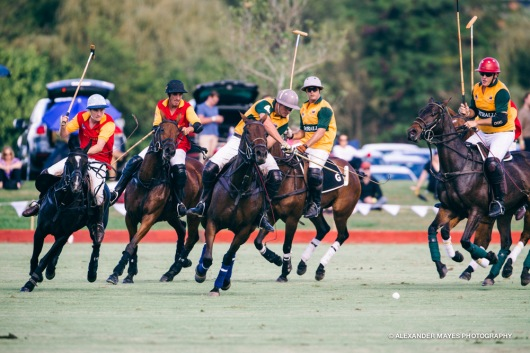 Brickworks Polo Day-8912
