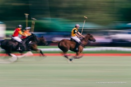 Brickworks Polo Day-8980