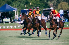 Brickworks Polo Day-9002