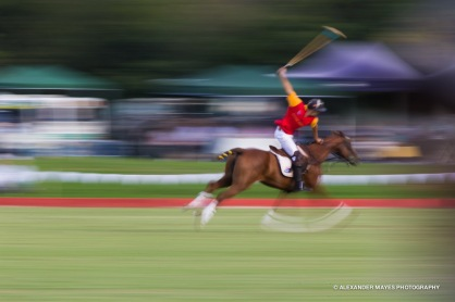 Brickworks Polo Day-9104