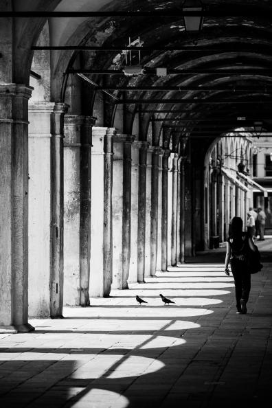 Venice Windows-1011