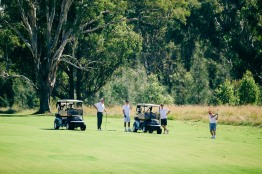 2015 Brickworks Golfday-4548