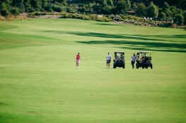 2015 Brickworks Golfday-4939