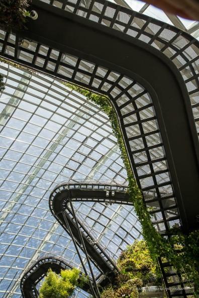 Singapore-3260