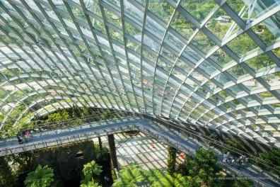 Singapore-3293