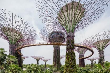 Singapore-3474
