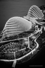 Singapore-3550